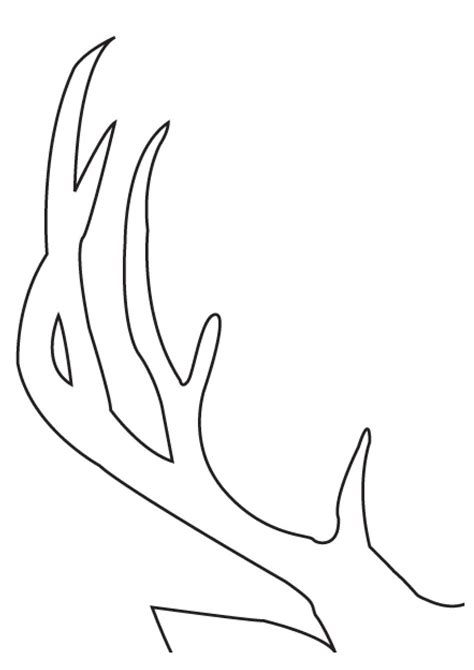 will deer antler increase size of s picture 5