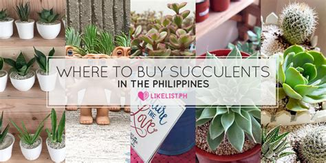 where to buy in philippines picture 1