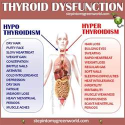 how does taking a thyroid pill affect tsh levels picture 13