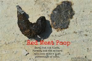 black bowel picture 6