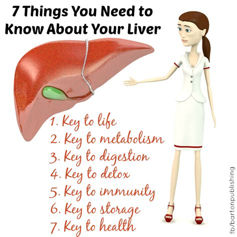 fatty liver cures picture 3