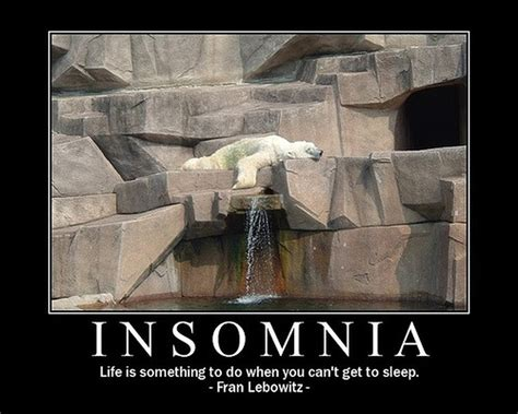 the cure for insomnia picture 2