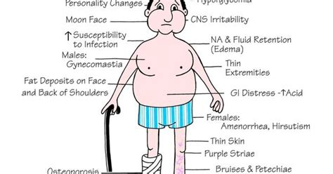 can an under active thyroid affect you bladder picture 1