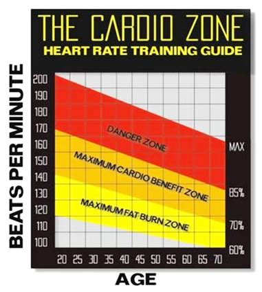 heart rate fat burning picture 1