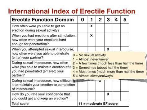 Penile erection score picture 2