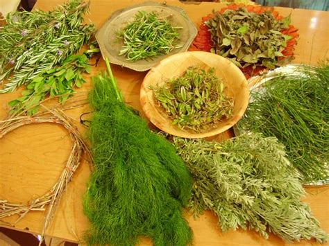 african reasons to burn herbs picture 10