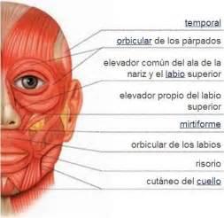 private label skin care picture 15