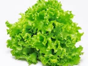 Cholesterol vitamins c e picture 9