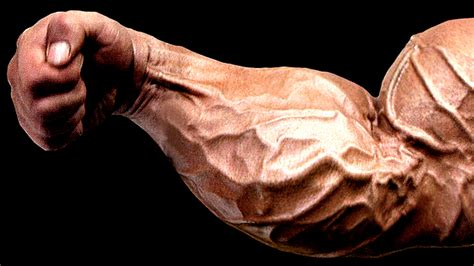build forearm muscle picture 11