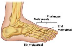 most common injuries to fifth metatarsal phalangeal joint picture 3