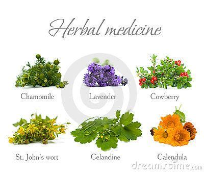 what natural herb natural herb that acts as picture 9