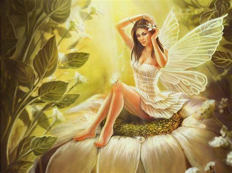 angel male enhancment picture 13