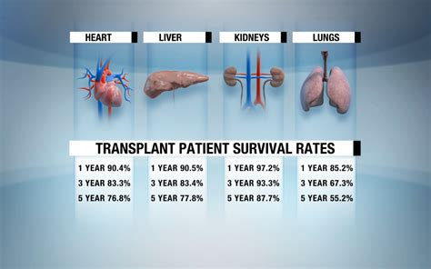 liver transplant survival rates picture 10