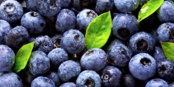 blueberries and type a diet picture 7