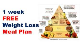 free weight loss and exrcise plans picture 5