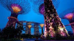 where to find vallarai in singapore picture 19