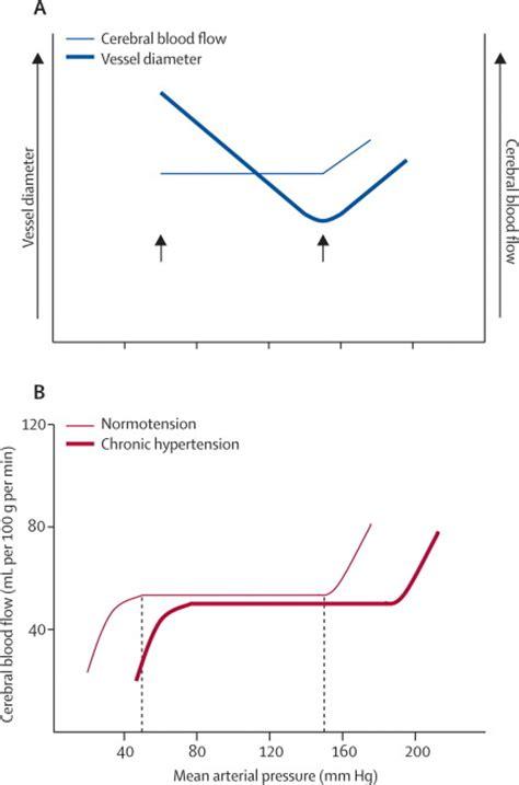 cerebral blood flow autoregulation picture 1