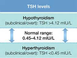 correct thyroid levels picture 7