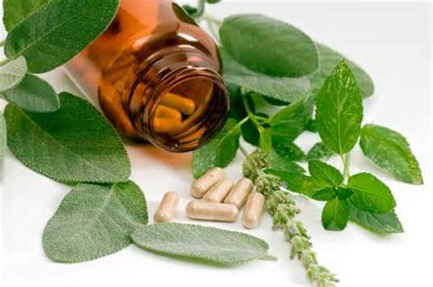 herbal suppliments picture 6
