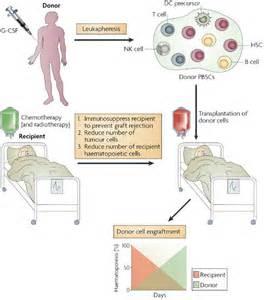 graft versus host disease liver transplant picture 2