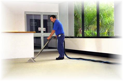 home cleaning business picture 5