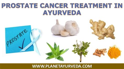 Ayurveda prostate cancer picture 2