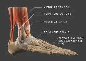 muscle spasams in the hands and feet picture 2