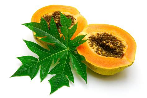 Papaya Leaf picture 10