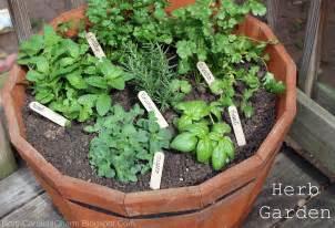 herbal garden picture 5