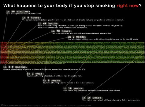 when you stop smoking picture 2