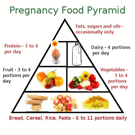 pregnancy and diet picture 5