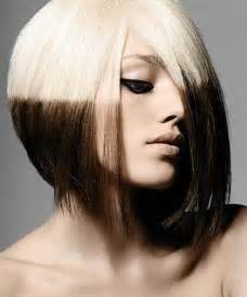 hair styles and color picture 14