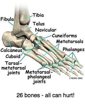 ankle joint pain picture 1