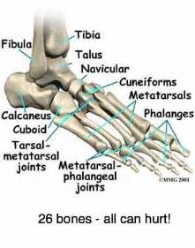 joint and leg pain picture 9