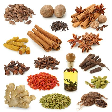 herbs that gives transsexuel their thick and thick picture 2