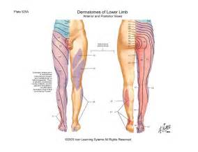 pain years after muscle byopsy in thigh picture 4
