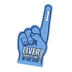 why do they do a liver biopsy picture 16