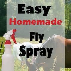 equine fly spray homemade picture 13