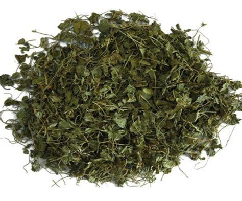 fenugreek leaves picture 7