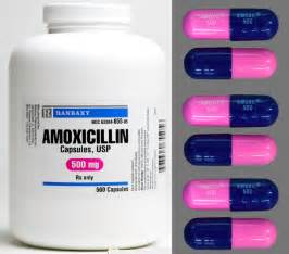 amoxillin and teeth picture 1