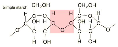 chemical structure of starch picture 14