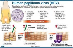 human papillomavirus 66 picture 10