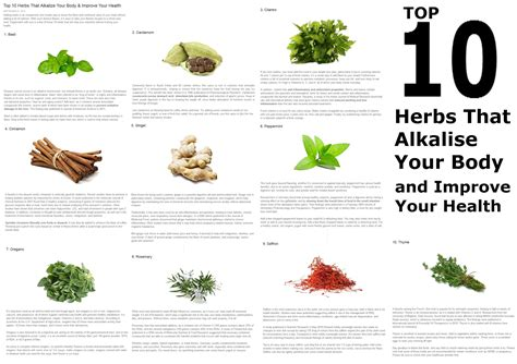 top 10 herbal companies picture 7
