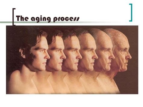 the aging process be delayed picture 1
