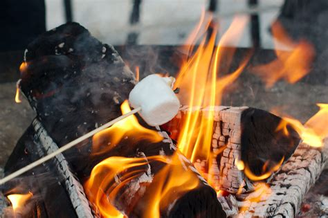 campfire marshmallows picture 13