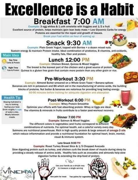 free diet and exerxise plans picture 18