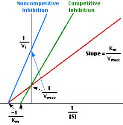vmax noncompetitive inhibition picture 3