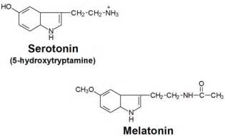 will melatonin give a euphoric feeling picture 6