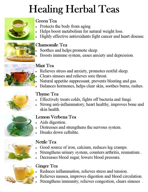 herbal healer 4 herb tea picture 1