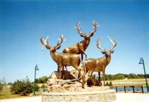 largest natural deer picture 10